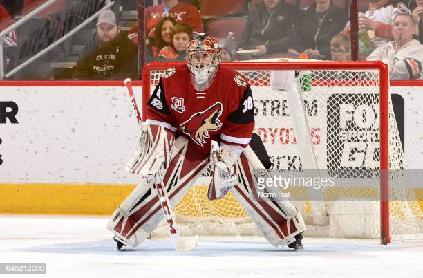 Marek Langhamer of the Arizona Coyotes gets ready to make a save against the Anaheim Ducks at Gila River Arena on February 20 2017 in Glendale...