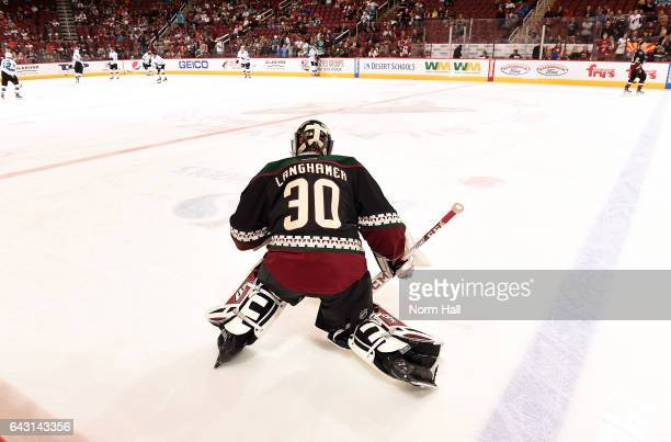 Marek Langhamer of the Arizona Coyotes prepares for a game against the San Jose Sharks at Gila River Arena on February 18 2017 in Glendale Arizona