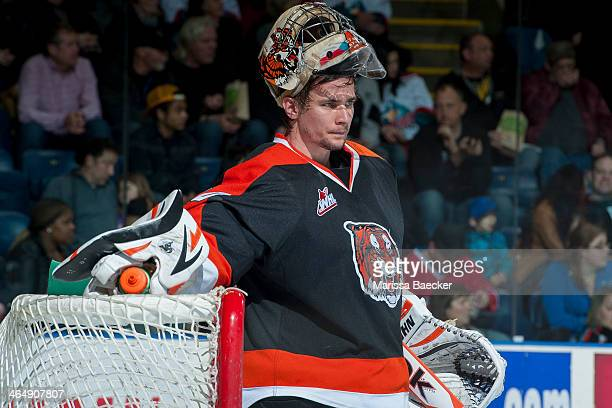 Marek Langhamer of the Medicine Hat Tigers stands in net during the time out against the Kelowna Rockets on January 24 2014 at Prospera Place in...