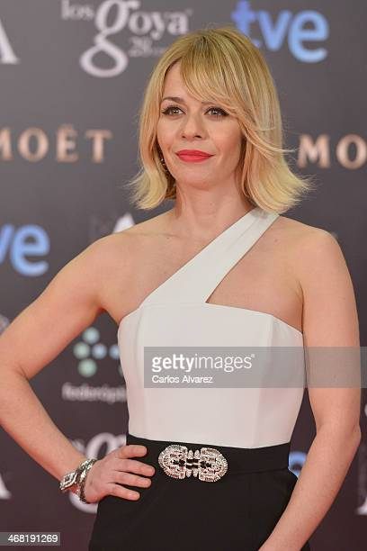 Maria Adanez attends Goya Cinema Awards 2014 at Centro de Congresos Principe Felipe on February 9 2014 in Madrid Spain