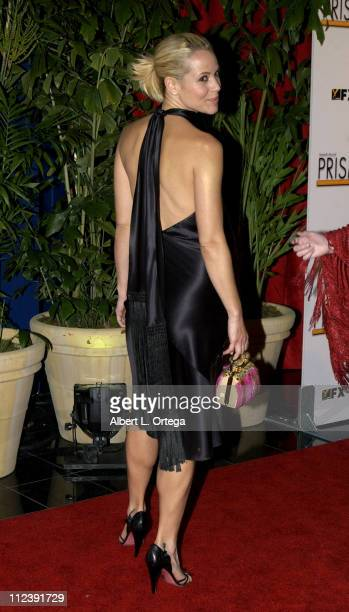 Maria Bello during The 7th Annual PRISM Awards Arrivals at Henry Fonda Music Box Theater in Hollywood California United States