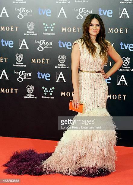 Maria Botto attends Goya Cinema Awards 2014 at Centro de Congresos Principe Felipe on February 9 2014 in Madrid Spain