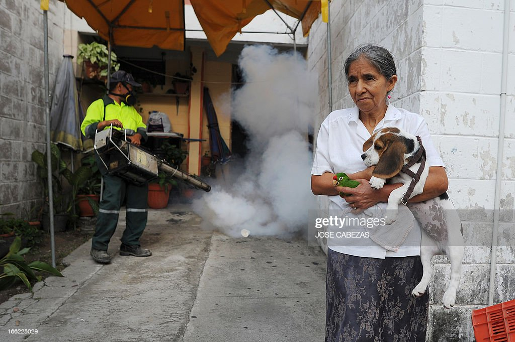 Maria Castro (R) holds her pets as a municipal worker fumigates inside her house in Madreselva neighborhood to fight the mosquito Aedes aegypti, the vector of the dengue fever in San Salvador, El Salvador on April 10, 2013. Salvadorean goverment issued an alert in 29 districts of El Salvador for the the high number of cases of dengue fever. AFP PHOTO/ Jose CABEZAS