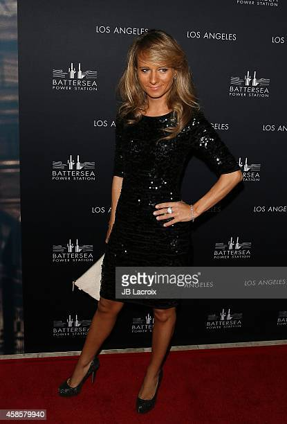 Maria Elena Infantino attends the Battersea Power Station Global Launch Party in Los Angeles at The London Hotel on November 6 2014 in West Hollywood...