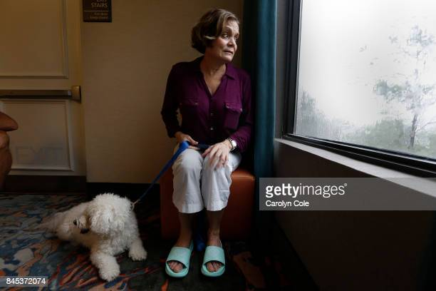 Maria Koenig age 63 of Estero and her dog Baeley sit by the window at their hotel where Maria is keeping an eye on the storm In Estero Florida at the...