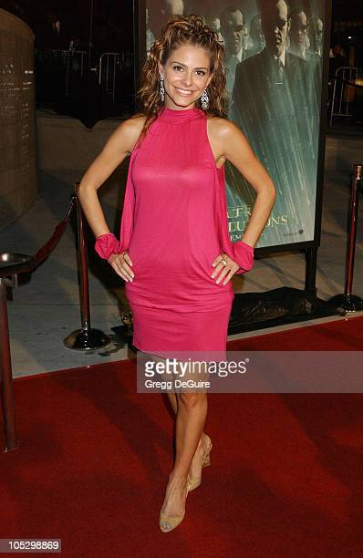 Maria Menounos during 'The Matrix Revolutions' Premiere at Disney Concert Hall in Los Angeles California United States
