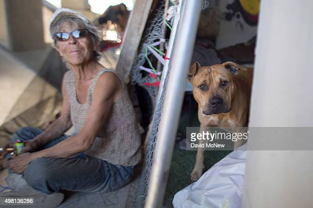 Maria Romero sits near dog Baby at her encampment inside a bridge that spans the concreted channel of the Arroyo Seco Creek on November 20 2015 in...