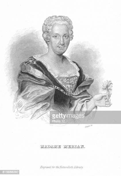 Maria Sibylla Merian German naturalist and flower painter Engraving
