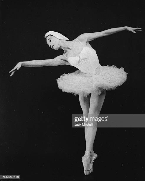 Colorado Ballet S Swan Lake: Swan Lake Stock Photos And Pictures