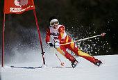 Maria Walliser of Switzerland during the International Ski Federation Women's Giant Slalom at the FIS Alpine World Ski Championship on 5 February...