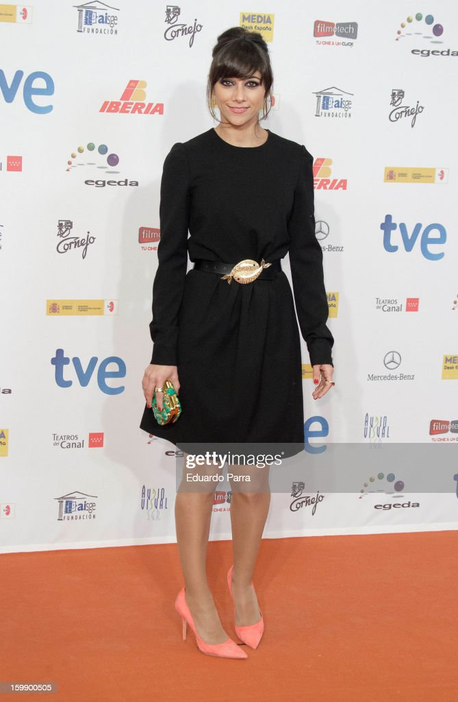 Mariam Hernandez attends Jose Maria Forque awards photocall at Canal theatre on January 22, 2013 in Madrid, Spain.
