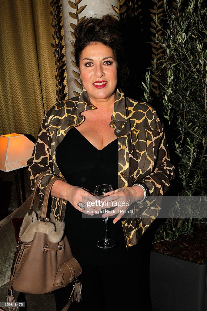 Marianne James attends 'La Petite Maison De Nicole' Inauguration Cocktail at Hotel Fouquet's Barriere on January 21, 2013 in Paris, France.