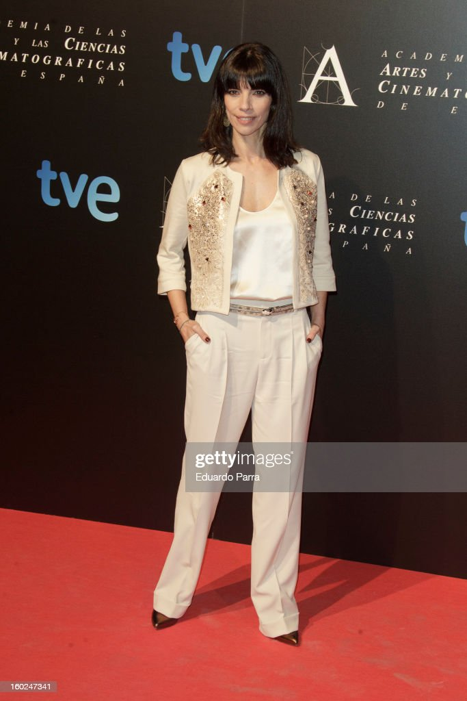 Maribel Verdu attends Goya awards final candidates party photocall at El Canal theatre on January 28, 2013 in Madrid, Spain.