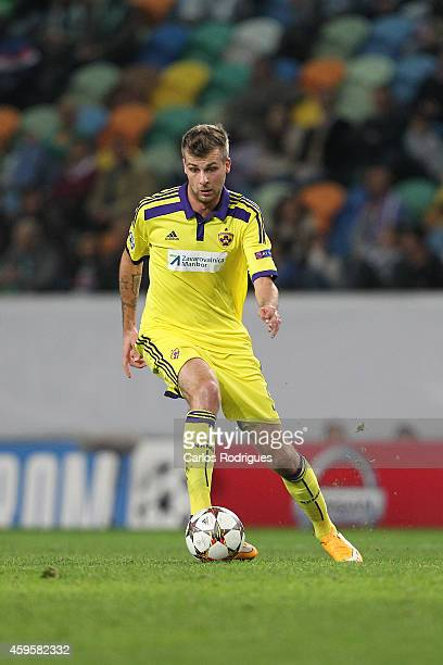 Maribor's midfielder Zeljko Filipovic during the UEFA Champions League match between Sporting Clube de Portugal and NK Maribor on November 25 2014 in...