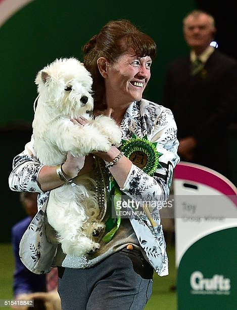 Marie Burns carries 'Burneze Geordie Girl' the West Highland White Terrier to the trophy presentation as winner of the Best in Show competition at...