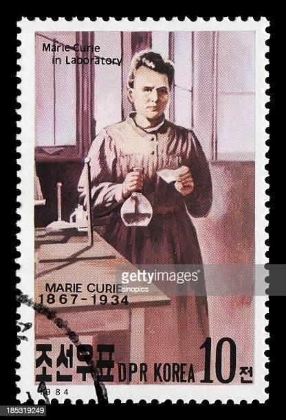Marie Curie (XXL
