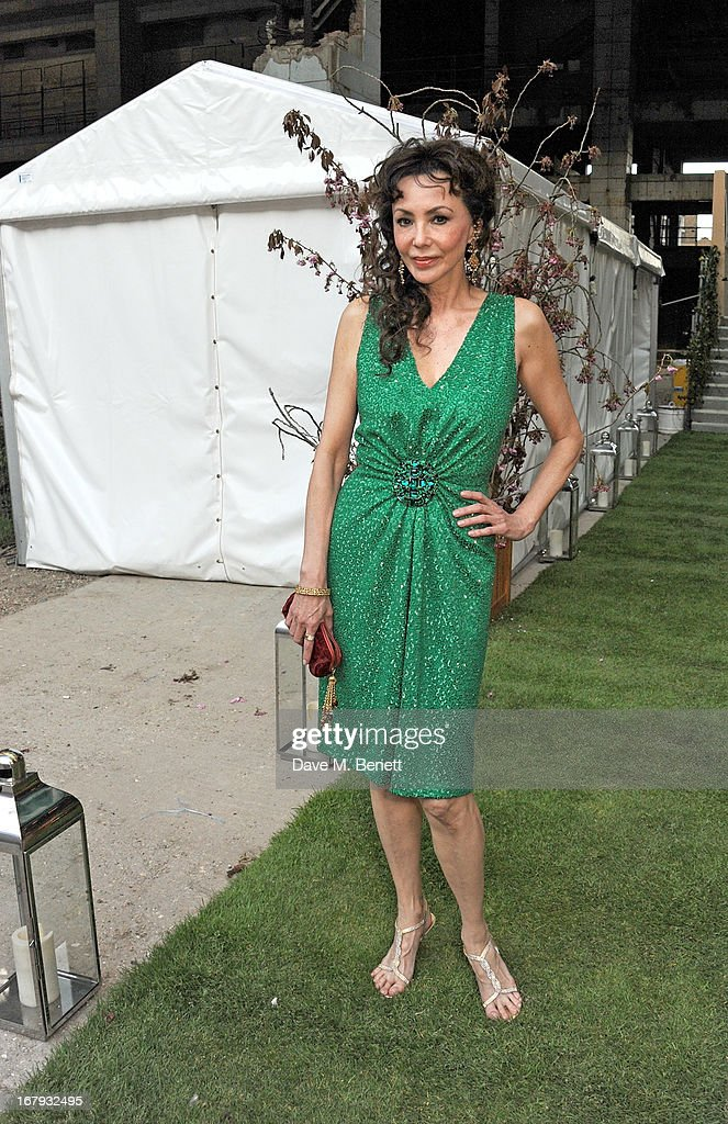 Marie Helvin attends Gabrielle's Gala 2013 supported by Lorraine Schwartz at Battersea Power Station on May 2, 2013 in London, England.