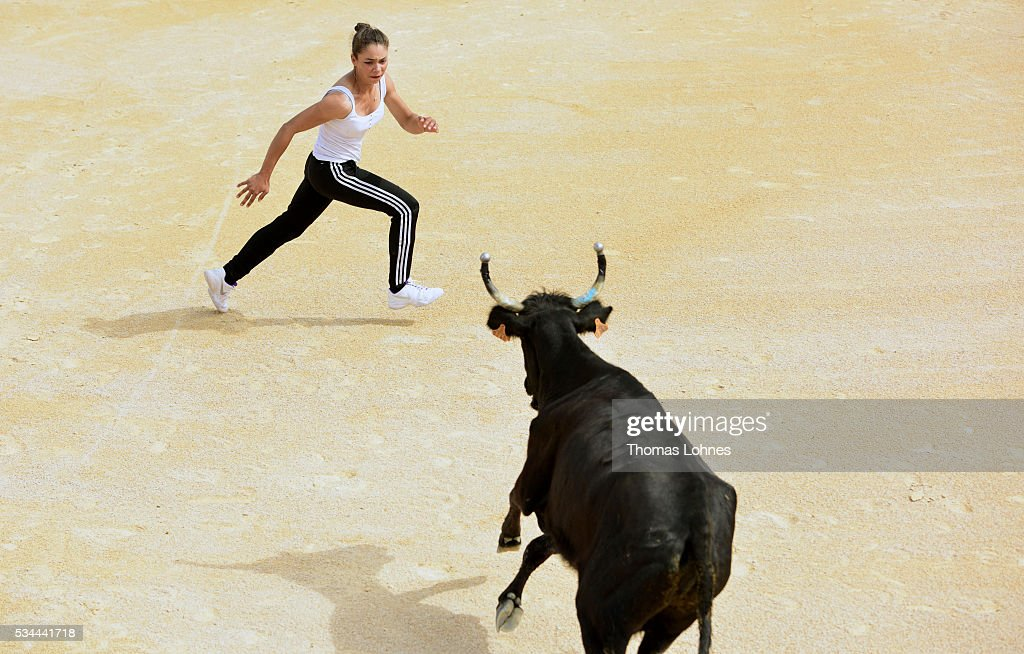 Marie Segretier (18) tries to touch a bull between the eyes during a presentation of a special form of bullfighting in the Camargue on May 26, 2016 in Saintes-Maries-de-la-Mer near Arles, France. Traditional horsemen, so called Guardians, celebrate the day in memory of theMarquis de Baroncelli and show tourist how they work. Marie works with horses and is the only 'cow girl' in the area of Staintes-Maries-de-la-Mer (Camargue). She started with 5-6 years.