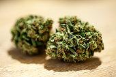 Marijuana close up.