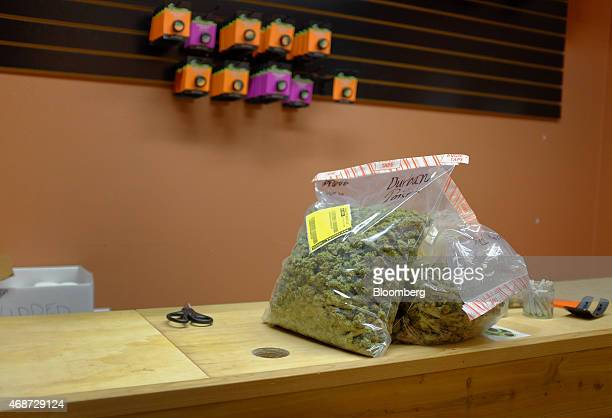 Marijuana sits on a counter after being delivered to a dispensary by the courier service CannaRabbit LLC in Louisville Colorado US on Friday March 27...