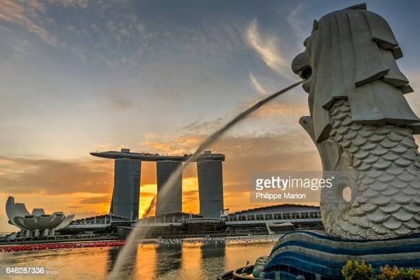 Marina Bay Sands luxury hotel and Merlion Statue at sunrise in Singapore