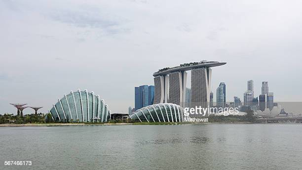 Marina Bay Skyline and Garden