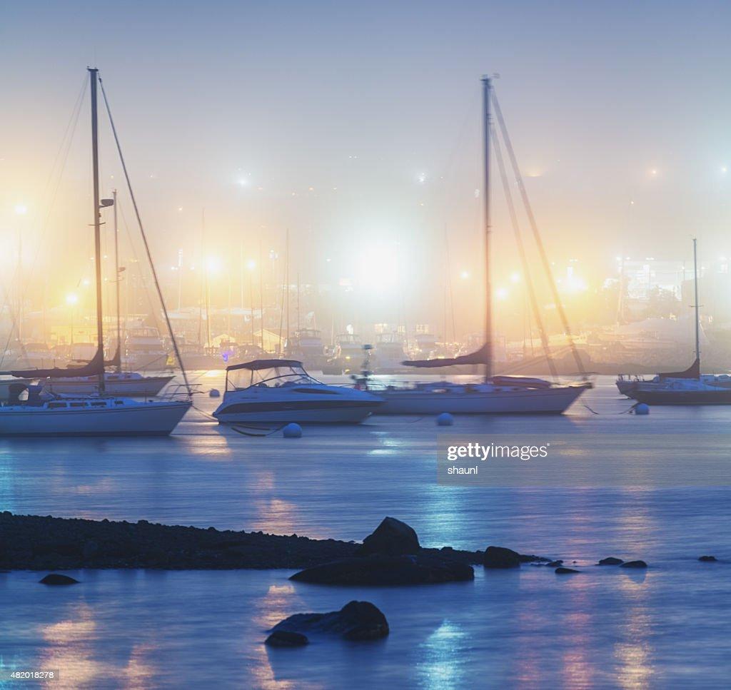 Marina in Fog