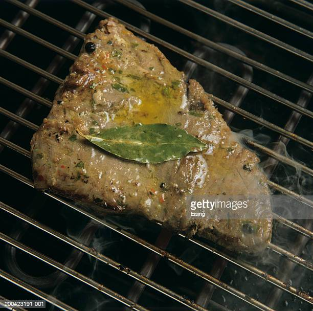 Marinated tuna steak on grill rack