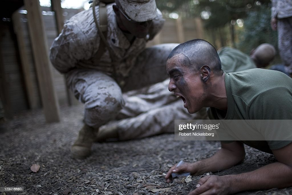 Marine Corps Drill Instructors put recruits through upper body exercises called planks during the 54hour Crucible event January 7 2011 at the Marine...