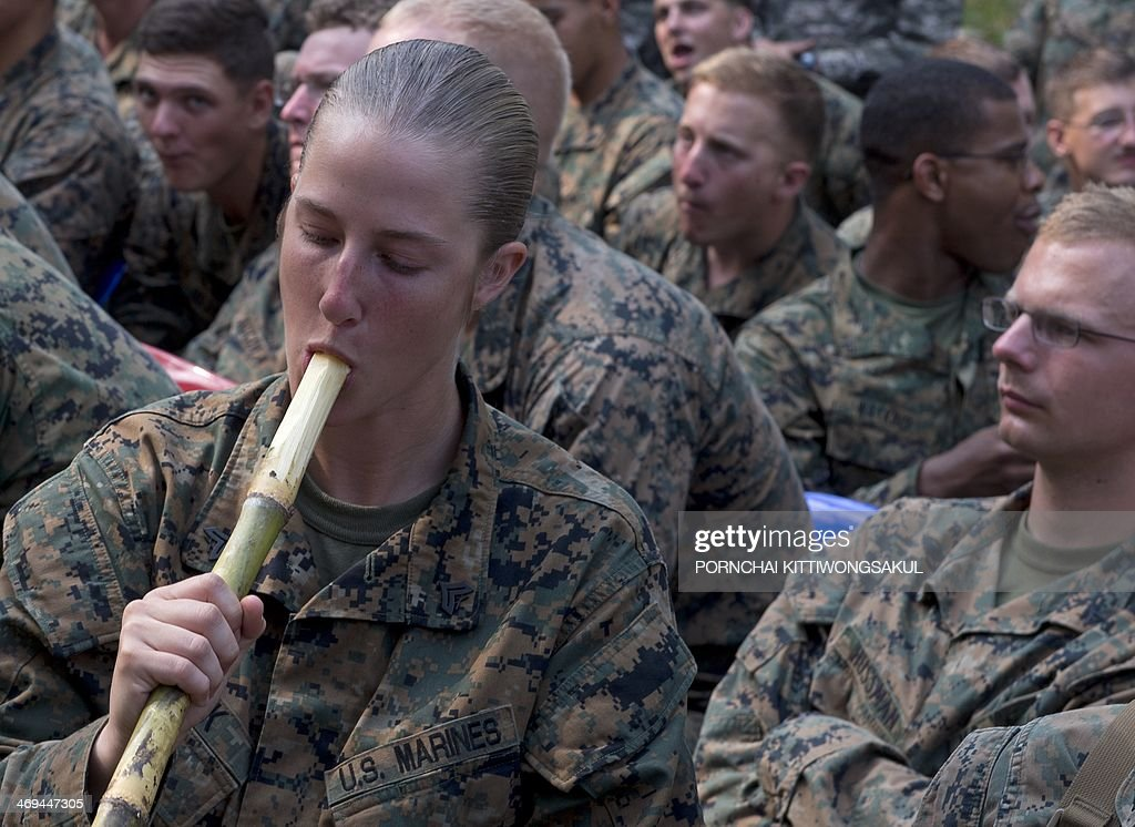Marine drinks water from sugarcane during a jungle survival program as part of the annual Cobra Gold 2014 combined military exercise at a navy base...