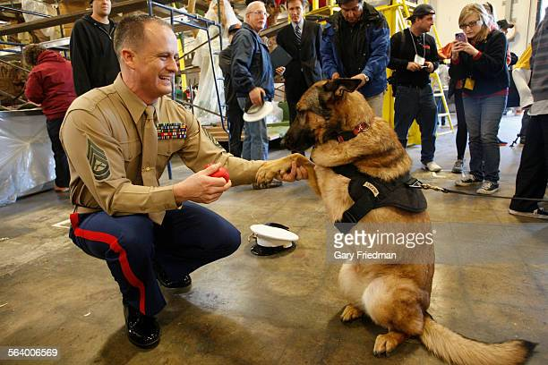 US Marine Gunnery Sgt Christopher Willingham is photographed with Lucca near the Natural Balance Pet Foods 2013 Rose Parade entry 'Canines with...