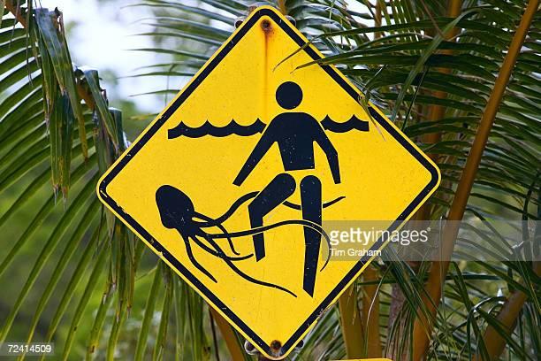 Marine stingers warning sign on Myall Beach by Cape Tribulation Queensland Australia