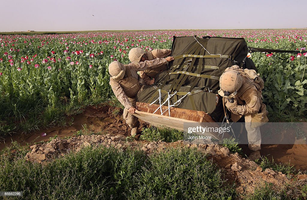 U.S. Marines retrieve a pallete of military supplies that parachuted off course into an opium poppy field on March 22, 2009 in remote Qalanderabad in southwest Afghanistan. The opium crop was slightly damaged when a U.S. Air Force airdrop of supplies blew off target, landing on some of the crops and crushing them. The Marines assured the irate Afghan farmer that he would be paid for his damaged poppy in compensation for the accident. The Taliban often extorts a percentage of the profits from the farmers' harvest to fund attacks on American forces, according to the military. U.S. Marines, however, have no mandate to destroy poppy crops and, in fact, rely on local farmers for information on Taliban activities.