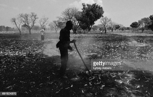 Maring Fred left and Beka Lashto prepare their land for the remainder of their famiy's return to Southern Sudan from Uganda where they have been...