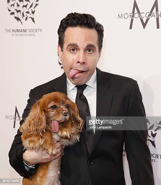 Mario Cantone and dog Toast attend 2016 Humane Society of the United States to the Rescue New York 'Saving Animal Lives' at Cipriani 42nd Street on...