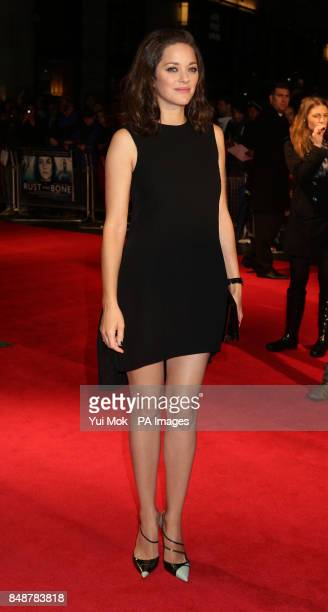 Marion Cotillard arriving for the BFI London Film Festival screening of Rust And Bone at the Odeon West End Leicester Square in central London