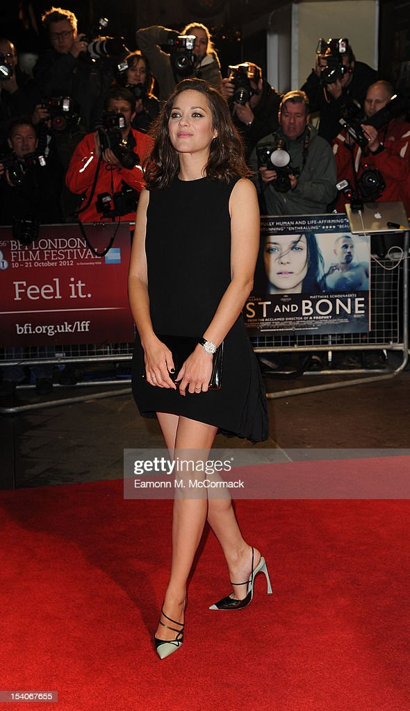 <a gi-track='captionPersonalityLinkClicked' href=/galleries/search?phrase=Marion+Cotillard&family=editorial&specificpeople=215303 ng-click='$event.stopPropagation()'>Marion Cotillard</a> attends the premiere of 'Rust and Bone' during the 56th BFI London Film Festival at Odeon West End on October 13, 2012 in London, England.