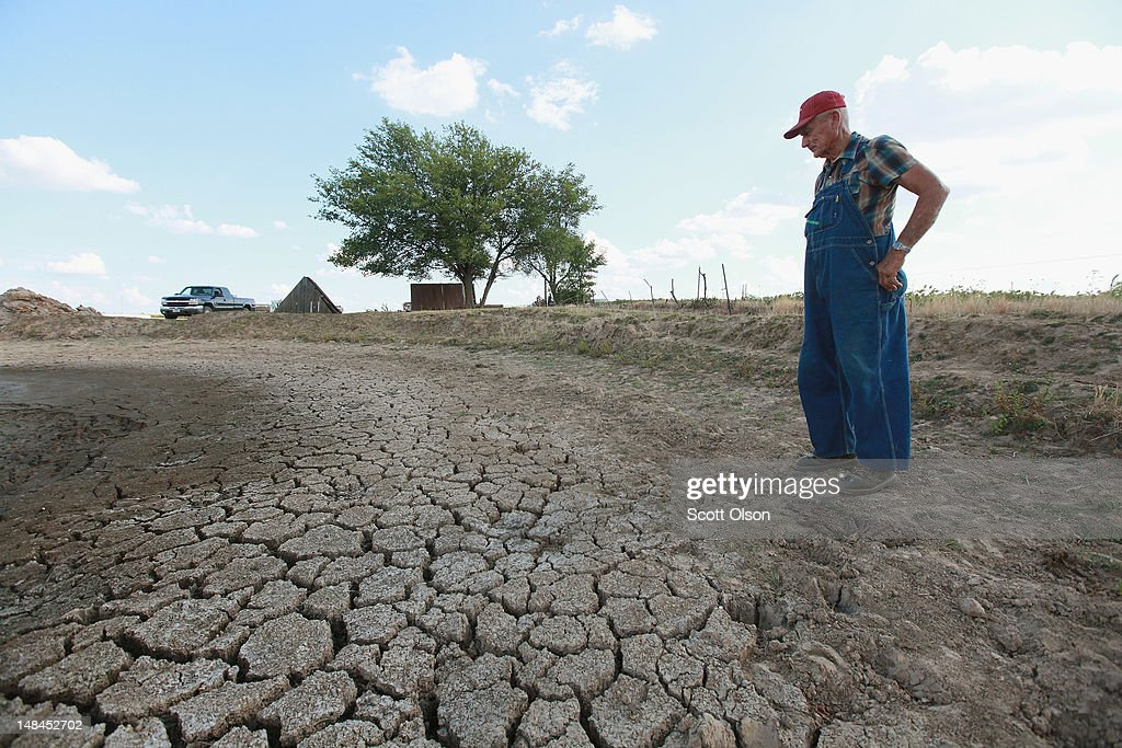 Marion Kujawa looks over a pond he uses to water the cattle on his farm on July 16, 2012 in Ashley, Illinois. Kujawa has been digging the pond deeper after it began to dry up during the current drought. According to the Illinois Farm Bureau the state is experiencing the sixth driest year on record.
