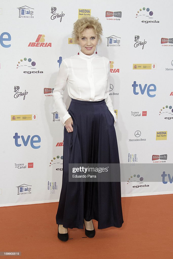 Marisa Paredes attends Jose Maria Forque awards photocall at Canal theatre on January 22, 2013 in Madrid, Spain.