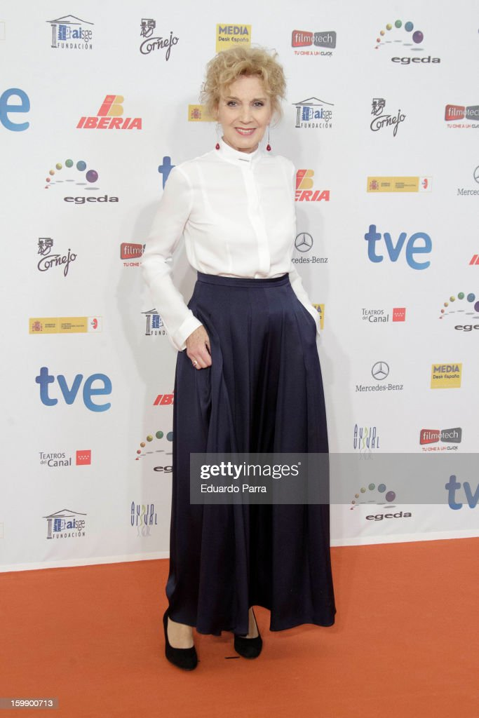 Marisa Pareeds attends Jose Maria Forque awards photocall at Canal theatre on January 22, 2013 in Madrid, Spain.