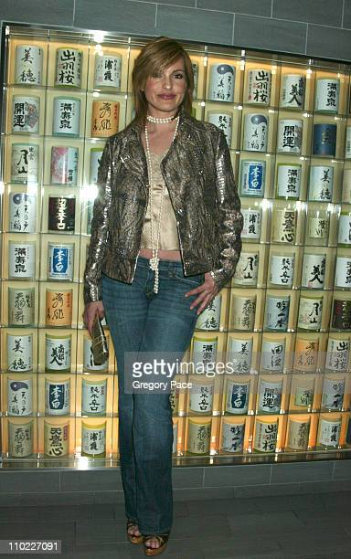 Mariska Hargitay during Conde Nast Traveler Hot List Party for 2005 at Megu in New York City New York United States