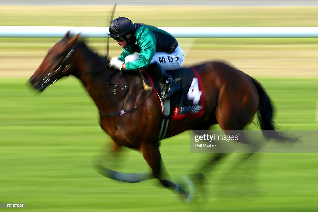 Mark Du Plessis riding Arcenciel runs in the Transpacific Industries Group during Diamond Day at the Ellerslie Racecourse on March 8 2014 in Auckland...