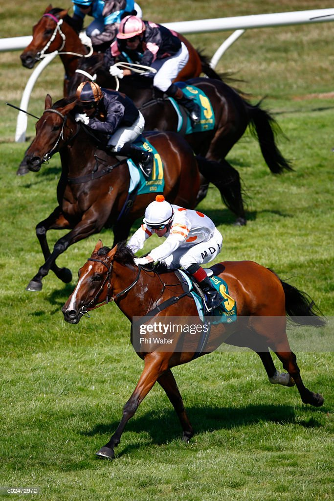 Mark Du Plessis riding Capella wins the Cambridge Stud Eight Carat Classic during the Boxing Day races at Ellerslie on December 26 2015 in Auckland...
