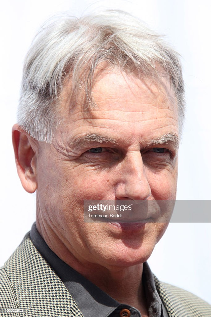 <a gi-track='captionPersonalityLinkClicked' href=/galleries/search?phrase=Mark+Harmon&family=editorial&specificpeople=208897 ng-click='$event.stopPropagation()'>Mark Harmon</a> attends the 'I Have A Dream' Foundation's 15th annual Los Angeles dreamer brunch held at the Skirball Cultural Center on March 3, 2013 in Los Angeles, California.
