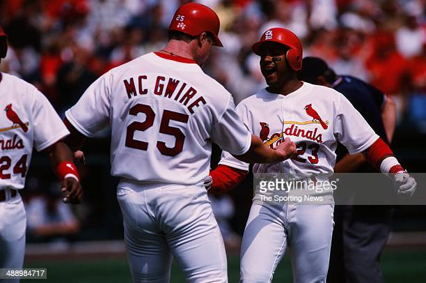 Mark McGwire of the St Louis Cardinals celebrates against the Milwaukee Brewers at Busch Stadium on April 8 1999 in St Louis Missouri The Crdinals...