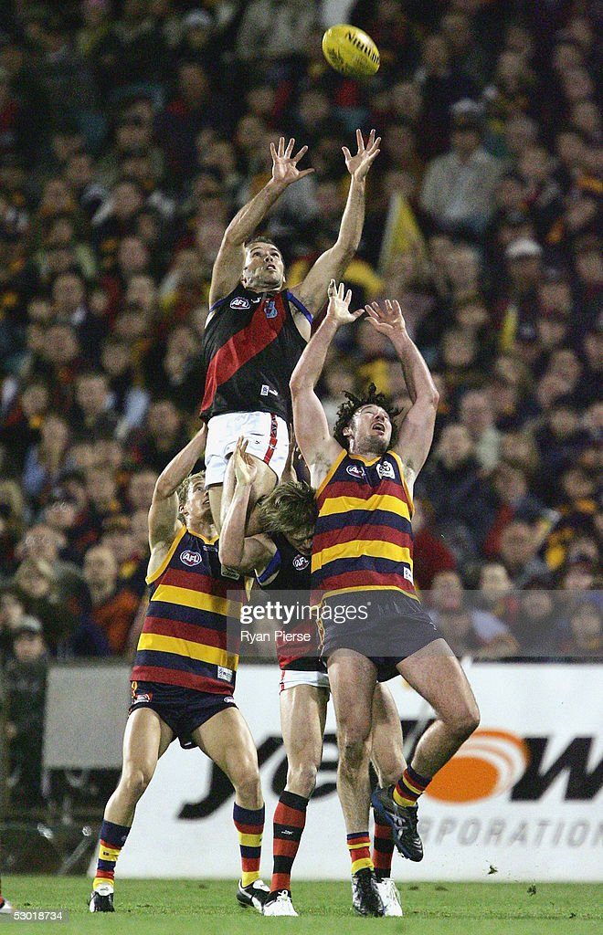 Mark McVeigh #10 for the Bombers in action during the round eleven AFL match between the Adelaide Crows and the Essendon Bombers at AAMI Stadium on June 4, 2005 in Adelaide, Australia.