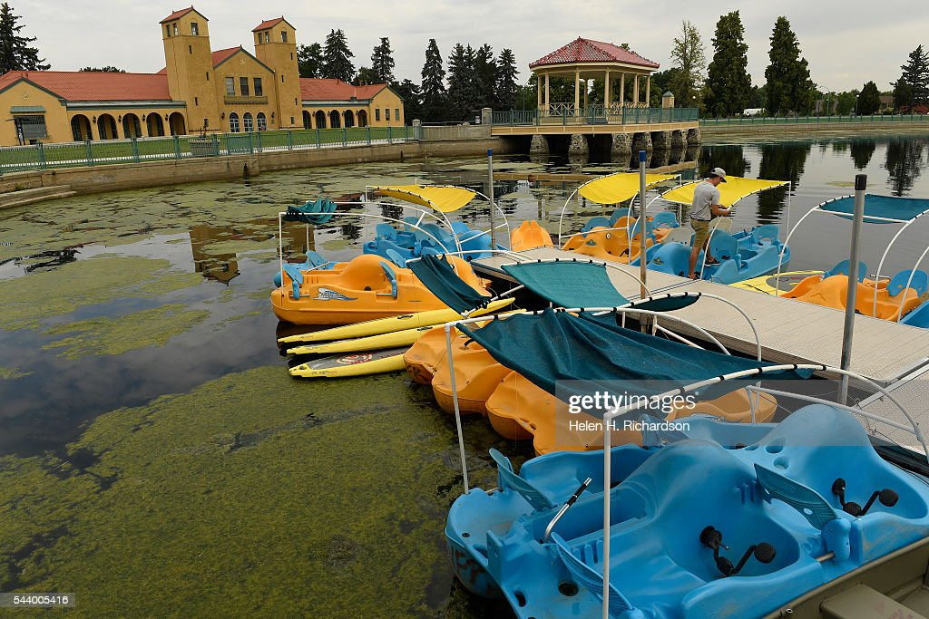 Mark Parisi, an assistant manager for Wheel Fun Rentals, works on repairing foot paddle boats on Ferril Lake near the Boat House at City Park on June 30, 2016 in Denver, Colorado. Denver Parks and Recreation is trying to take care of a huge algal bloom that has taken over the lake and shut down the boating on the lake. The department is using an algaecide that they are sprinkling by hand into the water as well as rakes to try to pull the long algae out of the water.