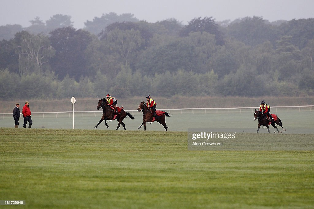 Mark Tompkins (2L) watches his racehorses work on Racecourse Side gallops on September 24, 2013 in Newmarket, England.