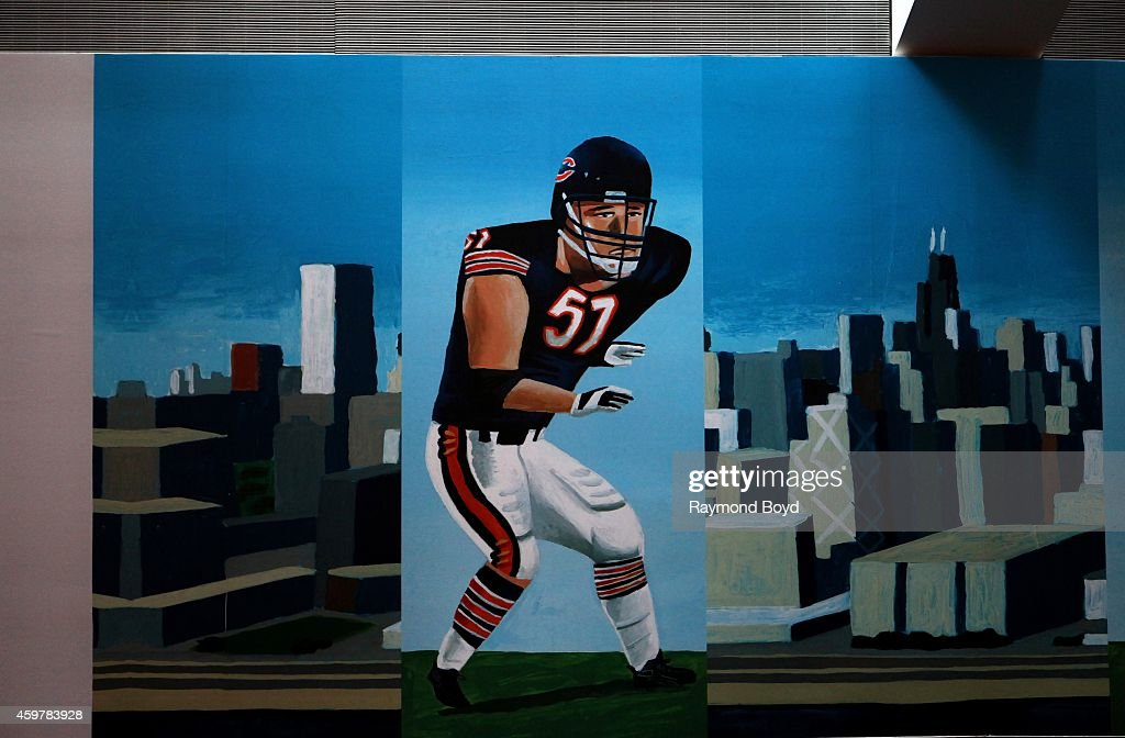 Mark Ulriksen's painted mural of former Chicago Bears player <a gi-track='captionPersonalityLinkClicked' href=/galleries/search?phrase=Dick+Butkus&family=editorial&specificpeople=809708 ng-click='$event.stopPropagation()'>Dick Butkus</a> inside the Chicago Bears' United Club at Soldier Field, home of the Chicago Bears football team in Chicago on November 26, 2014 in Chicago, Illinois.