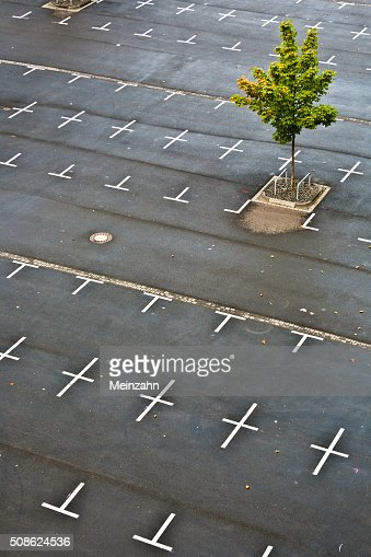 marked parking lot without cars : Stock Photo
